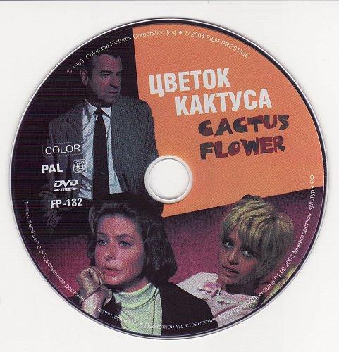 Цветок кактуса / Cactus Flower (1969)