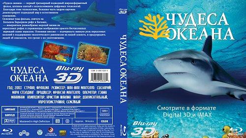Чудеса океана 3D / Ocean Wonderland 3D (2003)