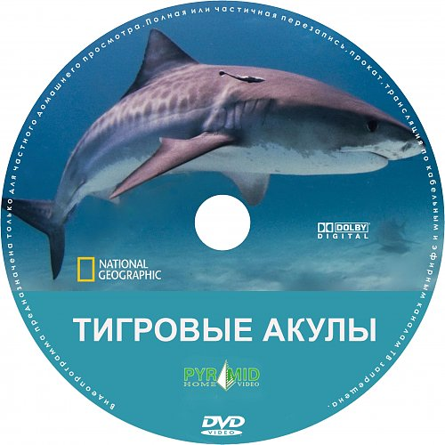 National Geographic: Тигровые акулы (2000)