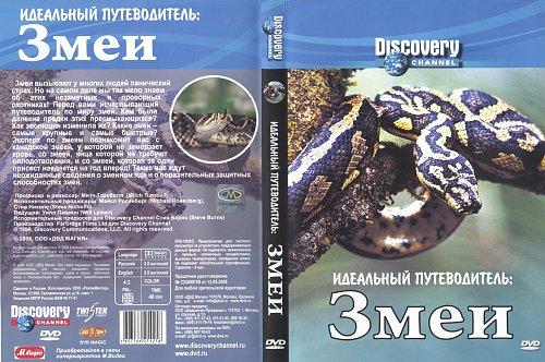 Discovery: Идеальный путеводитель: Змеи