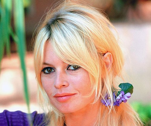 Брижит Бардо / Brigitte Bardot