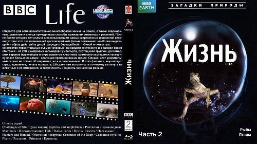 BBC: Жизнь / Life (2009)
