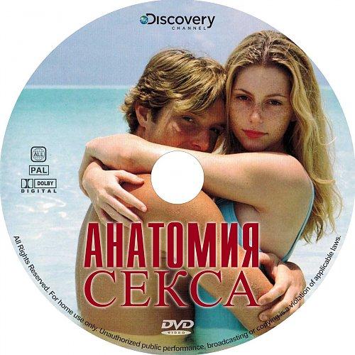 Анатомия секса / Anatomy Of Sex (2010)