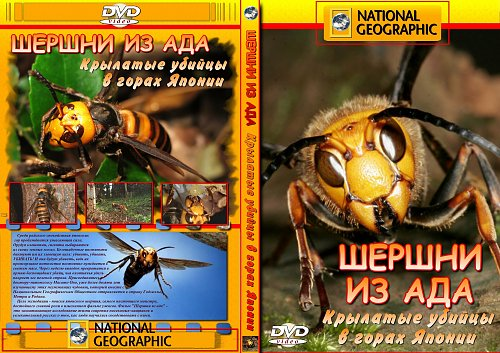 National Geographic: Шершни из ада / Hornets From Hell (2002)