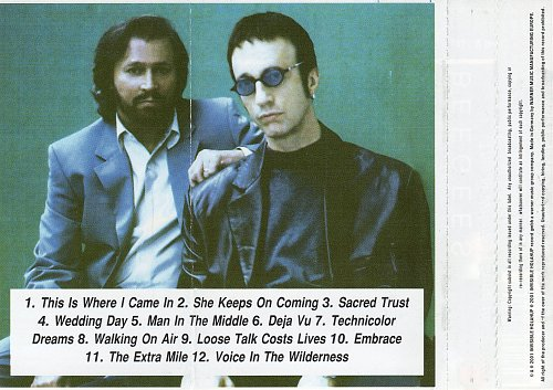 Bee Gees - This Is Where I Came In (2001)