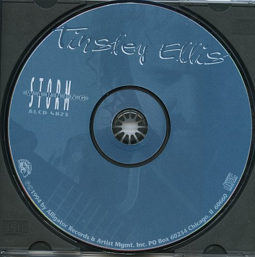 Tinsley Ellis - Storm Warning (1994)
