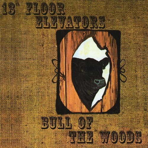 13th Floor Elevators - Bull Of The Woods (1969)