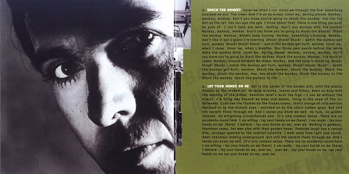 Peter Gabriel - Peter Gabriel (4) (1982)