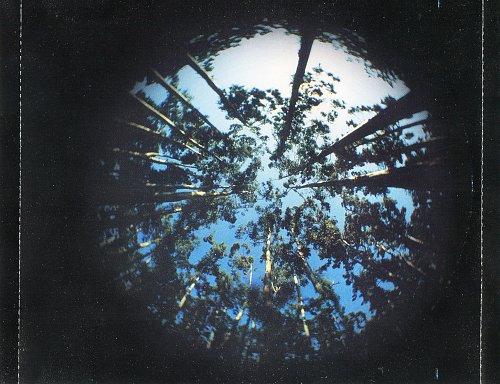 Тухманов Давид - Вечная весна. Избранные песни (2001)