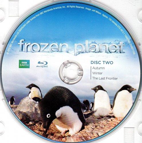BBC: Замёрзшая планета / Застывшая планета / Frozen Planet (2011)