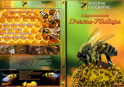 National Geographic: Пчелы-убийцы / Attack of the Killer Bees (2006)