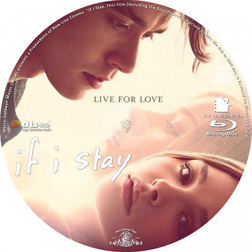 Если я останусь / If I Stay (2014)