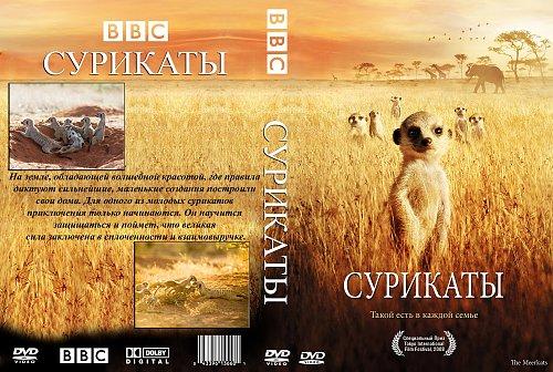 Сурикаты / The Meerkats (2008)