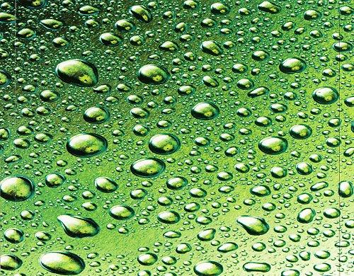 Liquid Tension Experiment -  Liquid Tension Experiment (1998)