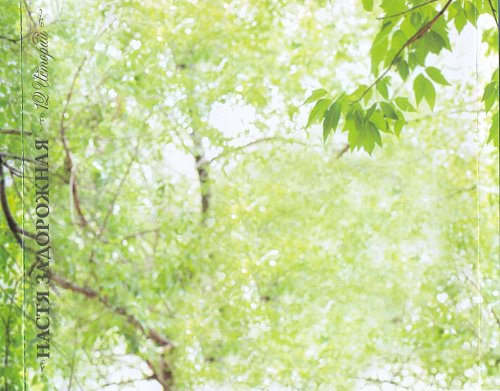 Задорожная Настя - 12 Историй (2009)