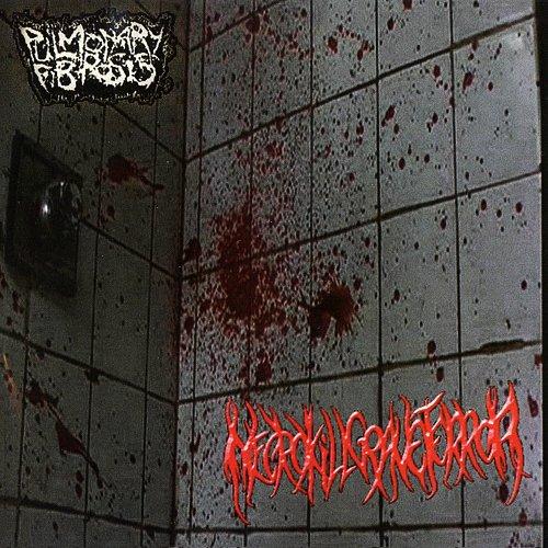 Pulmonary Fibrosis / NecroKillGraveTerror (2006/2008 D.I.Y. Records, Russia)