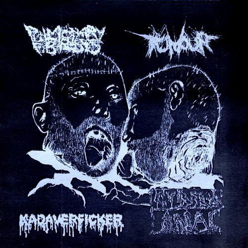 Pulmonary Fibrosis / Kadaverficker / Cyber Anal / Tumour (2001 Terrible Noise, Nachtgnosis, Germany)