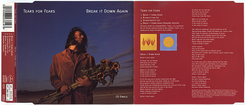 Tears For Fears - Break It Down Again (1993, CD-Single)
