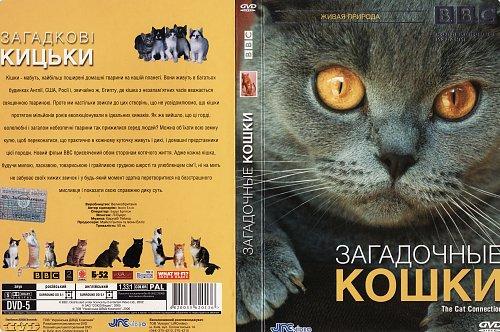 BBC: Загадочные кошки / BBC: The Cat Connection (2002)
