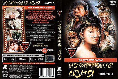 Шокирующая Азия 3 / Shocking Asia III: After Dark (1995)