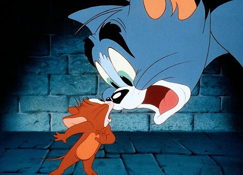 Том и Джерри / Tom and Jerry (2005)
