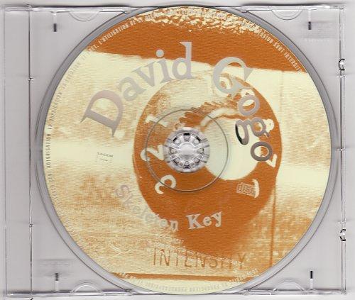 David Gogo – Skeleton Key (2002)