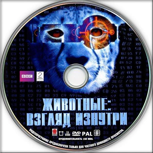 BBC: Животные. Взгляд изнутри / Animals - The Inside Story (2002)