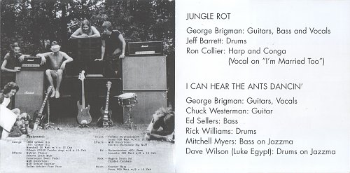George Brigman – Jungle Rot / I Can Hear The Ants Dancin' (1975/1977/2005)